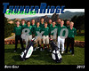 2013 TRHS Golf Boys Varsity 16x20 Team Photo