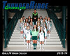 2013 Soccer Girls TRHS JV Green 16x20 Team