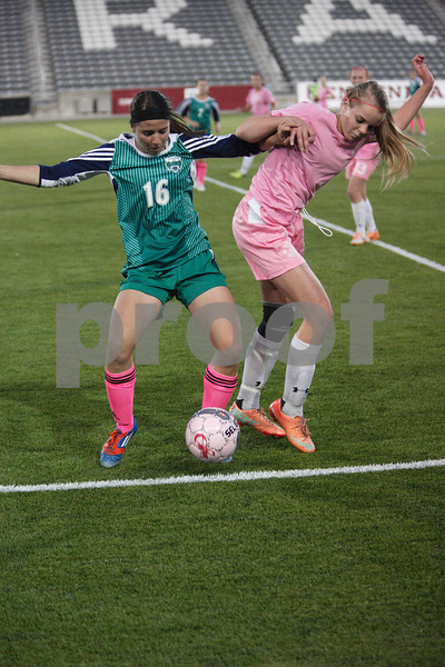2014 Soccer Girls TRHS v Castle-0452
