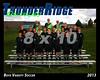 2013 TRHS Soccer Boys Varsity 16x20 Team Photo