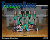 2014 TRHS Sophomore Volleyball 16x20 Team Photo